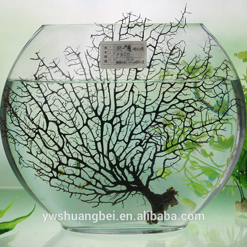 fancy round glass fish with low price for household home decoration